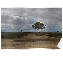 Tilled Earth-Lone Tree Poster