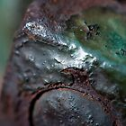 Rusty Nut by Gary Chapple