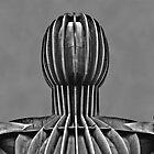 Head & Shoulders by David  Parkin
