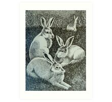 Four Bunnies Art Print