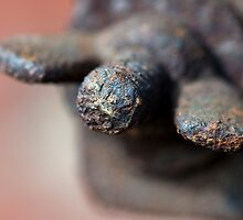 Rusty Wingnut by Gary Chapple