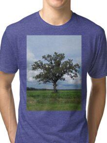 Single Tree In The Wide Open Fields Tri-blend T-Shirt