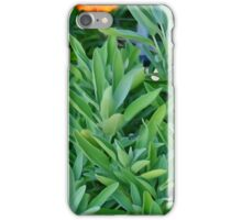 Sage and Marigold iPhone Case/Skin