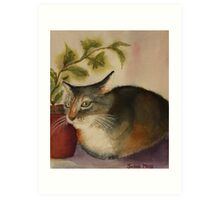 French Pussy Cat Art Print