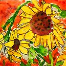Crazy daisey on orange red backround by Anna  Lewis