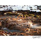 Sun City Creek, South Carolina by Ryan Epstein