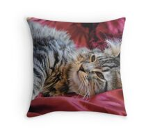 Emma Cat Playing Throw Pillow