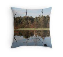 Water Resurrection - Young Rd, Torrumbarry Throw Pillow