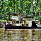 Pride of the Murray by Steven  Agius