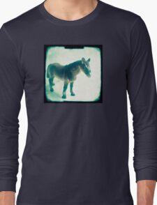 Little horse Long Sleeve T-Shirt