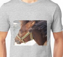The head of a brown horse in a profile closeup Unisex T-Shirt