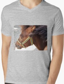 The head of a brown horse in a profile closeup Mens V-Neck T-Shirt