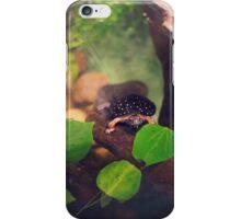 Turtle Saying Hello iPhone Case/Skin