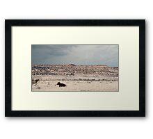 Desert Plains... Framed Print