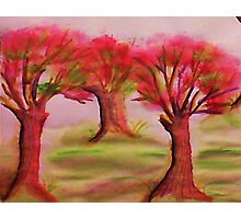 3 nice big trees , probly Oak, in watercolor Photographic Print
