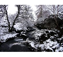 On the Cateran Trail Photographic Print