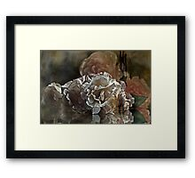 """""""Mirror ,Mirror on the Wall ..."""" Framed Print"""