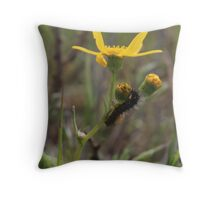 Creepy Crawly Throw Pillow