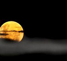 Lunar Mist by Marion  Cullen