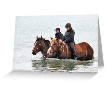 Wet horse legs..... Greeting Card