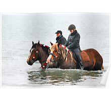Wet horse legs..... Poster