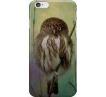 Northern Pygmy Owl  iPhone Case/Skin