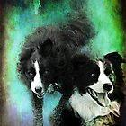 Watch Dog by Rhonda F.  Taylor