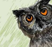 The owl by createit123