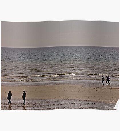 Desolate Shore Poster