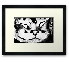 Sleeping Kitty ©  Framed Print