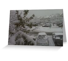 An Icy Story Greeting Card