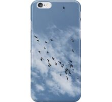 Happy Birds iPhone Case/Skin