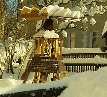 Winter in Front Garden by karina5