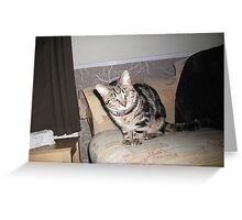 """""""Look into my eyes..."""" Greeting Card"""