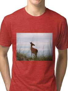 Deer Checking Out The Beach Tri-blend T-Shirt