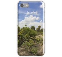 Barrier Island Ecosystem iPhone Case/Skin