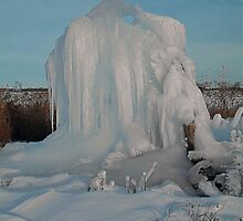(#2) Ice Monster -  Two in a  Series of Six ! by Jan Siemucha