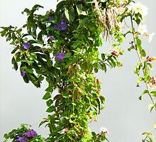 Misty Morning In A Caribbean Garden by Lorna81
