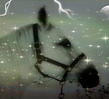 Spirit Horse  © by Dawn M. Becker