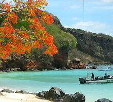A Caribbean Beach Idyll by Lorna81