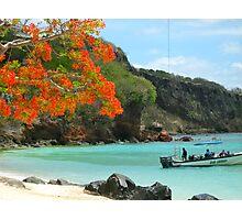 A Caribbean Beach Idyll Photographic Print