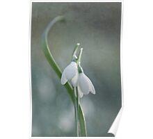 Whispering spring Poster