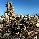 Dragon Driftwood -colour by sarnia2