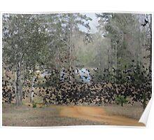 Black birds phenomenon! Poster