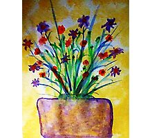 Flowers on the Patio, watercolor Photographic Print
