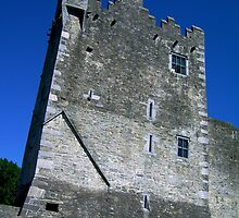 Tour Ross Castle by Coexistism