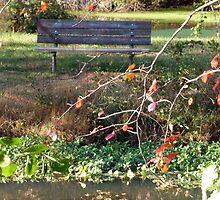 Come sit with me beside Greenbelt Lake 1 by nealbarnett