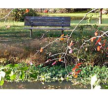 Come sit with me beside Greenbelt Lake 1 Photographic Print