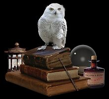 Harry Potter - Hogwarts Kit v1.0 by obsidiandream