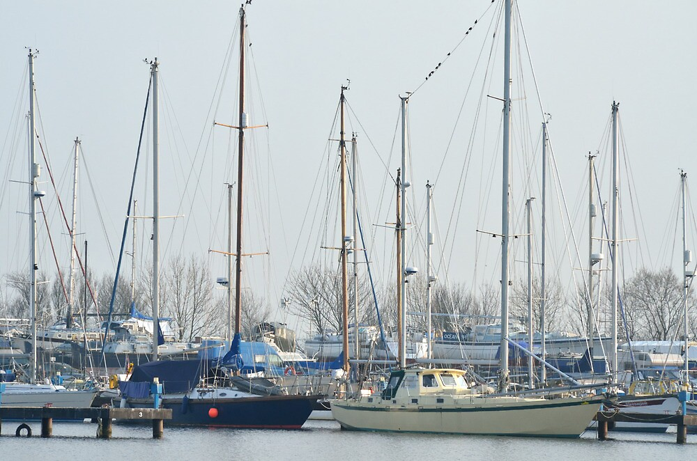 Masts by Steve